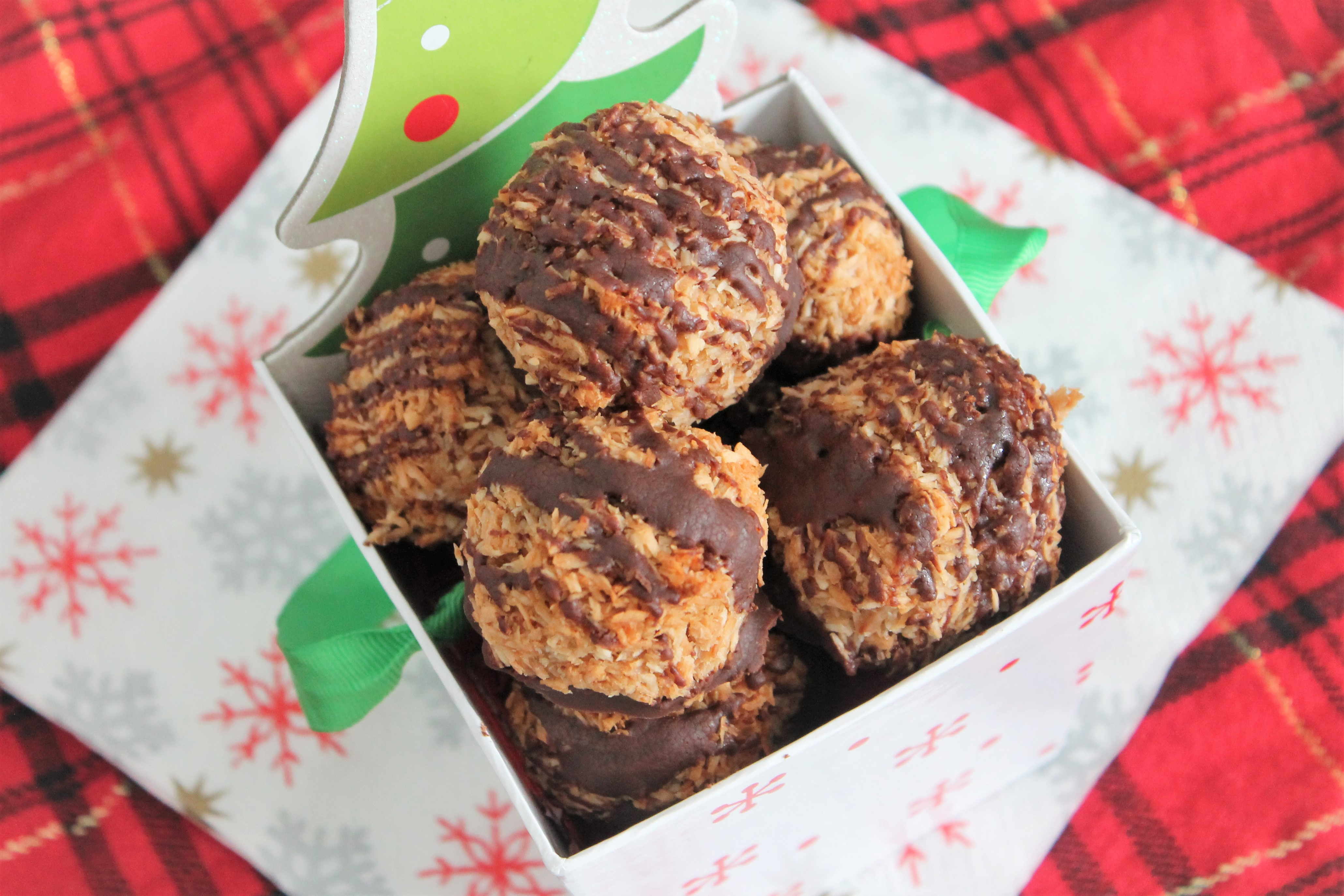 Healthy Toasted Coconut Macaroons (GF, DF)
